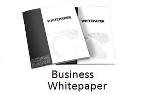 Business whitepaper